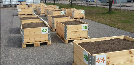 Planting boxes in Hanasaari urban allotment